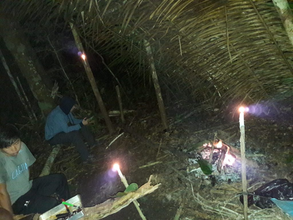 Amazonas Dschungel Regenwald verlaufen gefährlich Tour übernachten Hängematte